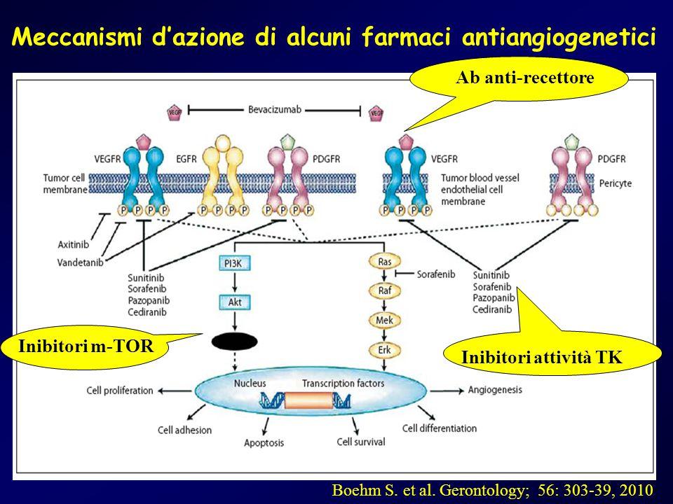 Meccanismi d'azione di alcuni farmaci antiangiogenetici Boehm S. et al. Gerontology; 56: 303-39, 2010 Ab anti-recettore Inibitori attività TK Inibitor