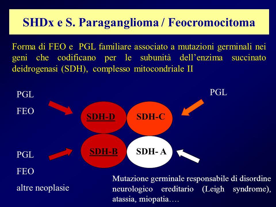 SHDx e S. Paraganglioma / Feocromocitoma SDH-DSDH-C SDH- ASDH-B PGL FEO PGL FEO altre neoplasie PGL Forma di FEO e PGL familiare associato a mutazioni