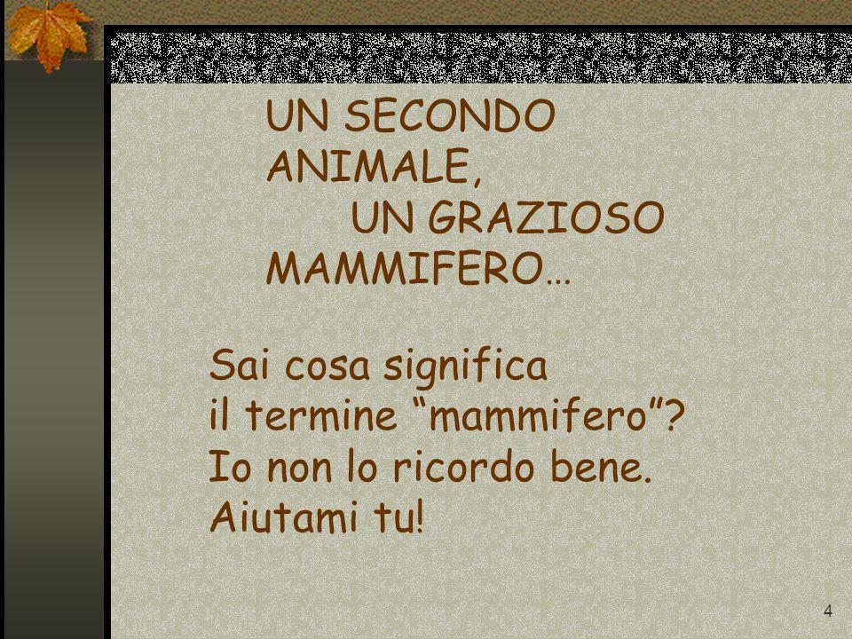 4 UN SECONDO ANIMALE, UN GRAZIOSO MAMMIFERO… Sai cosa significa il termine mammifero .