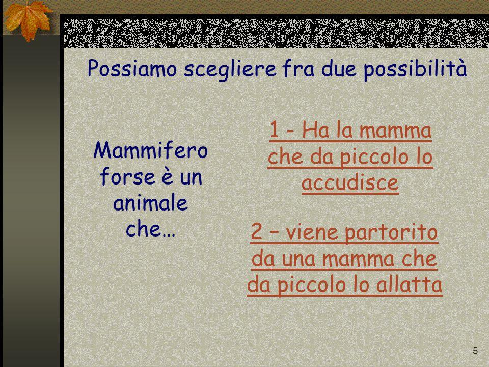 5 Mammifero forse è un animale che… Possiamo scegliere fra due possibilità 1 - Ha la mamma che da piccolo lo accudisce 2 – viene partorito da una mamma che da piccolo lo allatta
