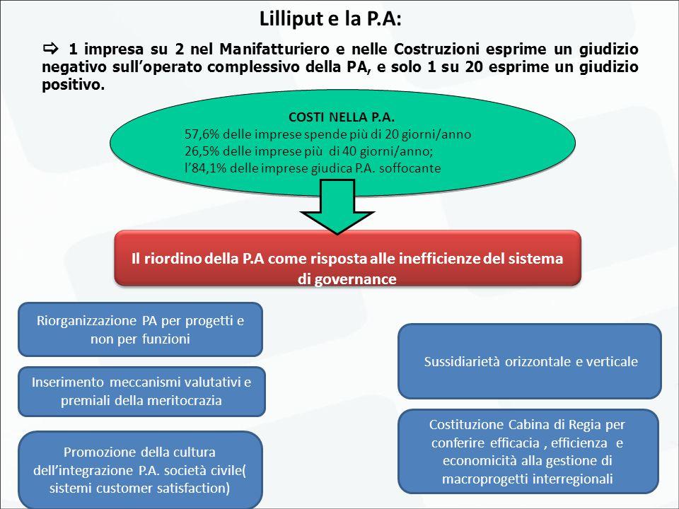 18 Lilliput e la P.A: Il riordino della P.A come risposta alle inefficienze del sistema di governance Riorganizzazione PA per progetti e non per funzioni Promozione della cultura dell'integrazione P.A.
