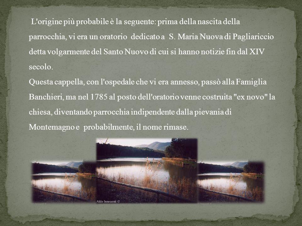 L'origine più probabile è la seguente: prima della nascita della parrocchia, vi era un oratorio dedicato a S. Maria Nuova di Pagliariccio detta volgar