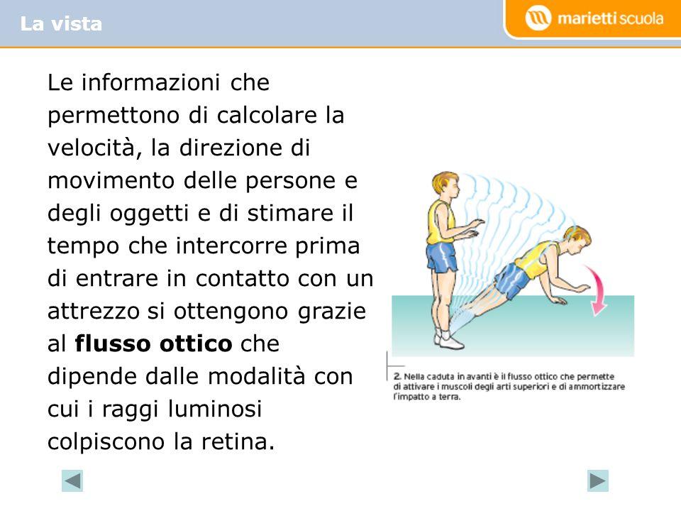 Le informazioni che permettono di calcolare la velocità, la direzione di movimento delle persone e degli oggetti e di stimare il tempo che intercorre