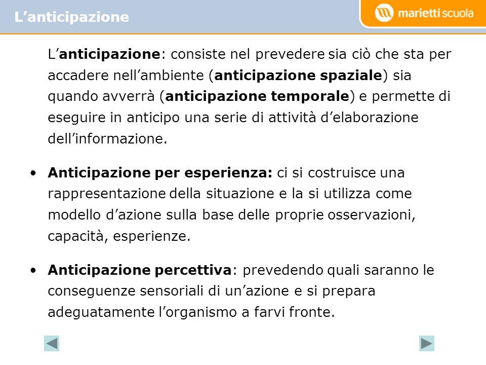 L'anticipazione: consiste nel prevedere sia ciò che sta per accadere nell'ambiente (anticipazione spaziale) sia quando avverrà (anticipazione temporal