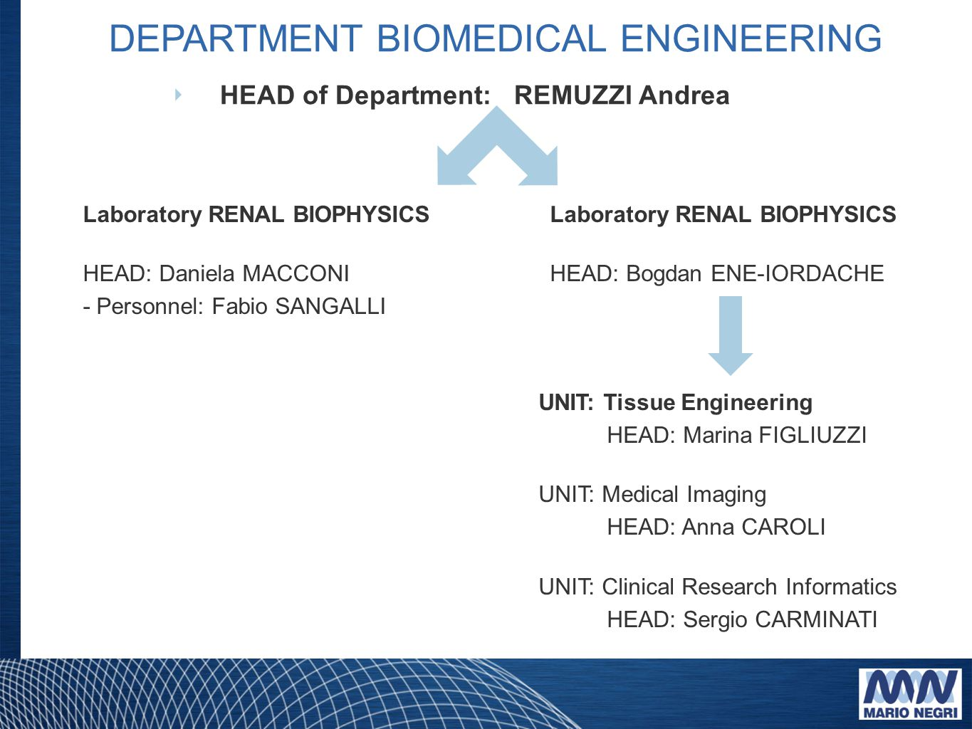 DEPARTMENT BIOMEDICAL ENGINEERING ‣ HEAD of Department: REMUZZI Andrea Laboratory RENAL BIOPHYSICS HEAD: Daniela MACCONI - Personnel: Fabio SANGALLI Laboratory RENAL BIOPHYSICS HEAD: Bogdan ENE-IORDACHE UNIT: Tissue Engineering HEAD: Marina FIGLIUZZI UNIT: Medical Imaging HEAD: Anna CAROLI UNIT: Clinical Research Informatics HEAD: Sergio CARMINATI