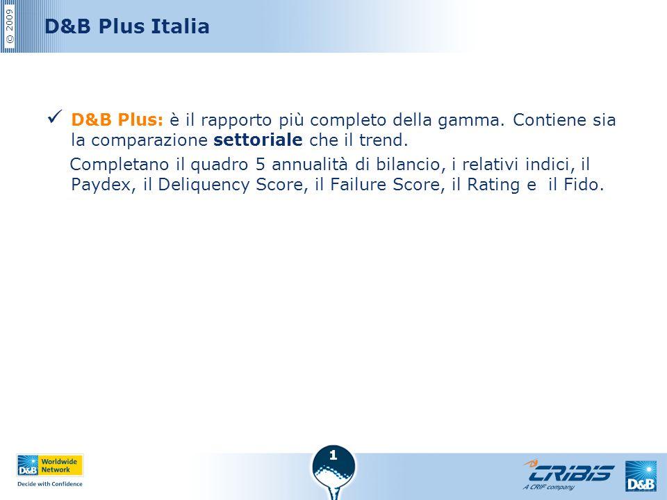 © 2009 1 D&B Plus Italia D&B Plus: è il rapporto più completo della gamma. Contiene sia la comparazione settoriale che il trend. Completano il quadro