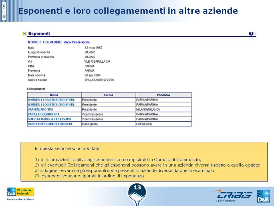 © 2009 13 Esponenti e loro collegamementi in altre aziende In questa sezione sono riportate: 1) le informazioni relative agli esponenti come registrat