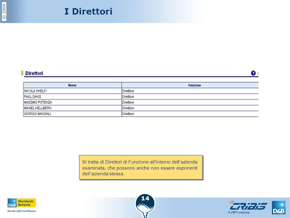 © 2009 14 I Direttori Si tratta di Direttori di Funzione all'interno dell'azienda esaminata, che possono anche non essere esponenti dell'azienda stess