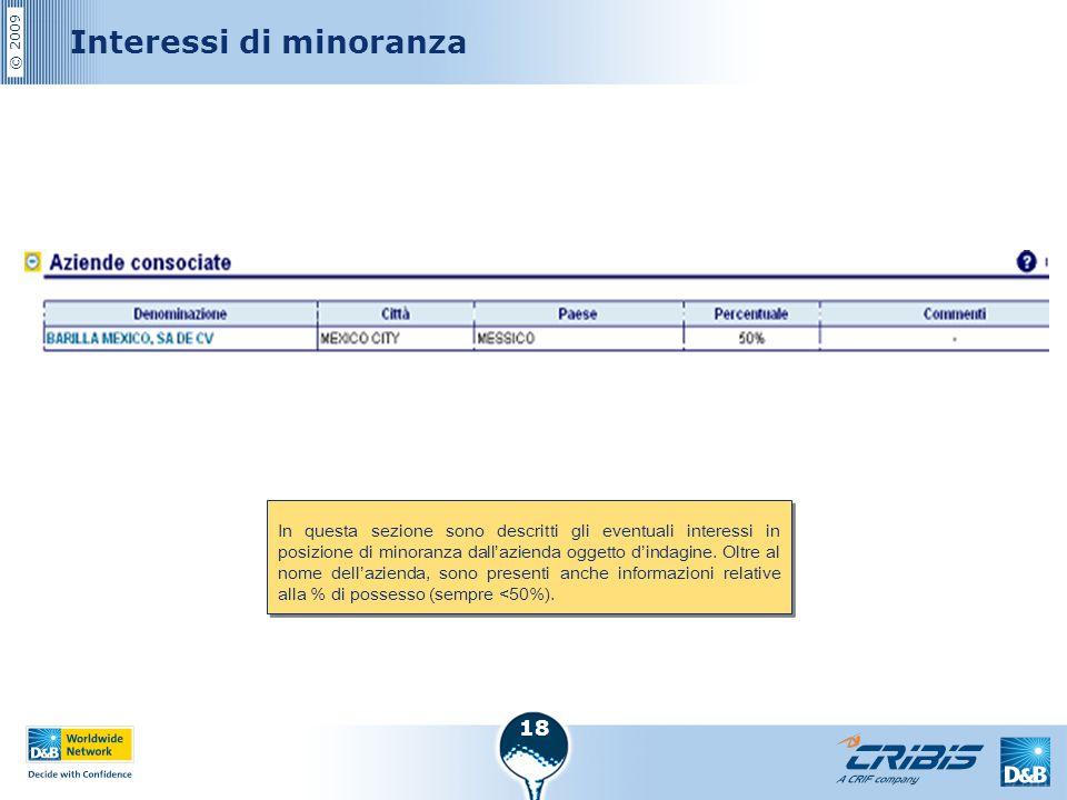 © 2009 18 Interessi di minoranza In questa sezione sono descritti gli eventuali interessi in posizione di minoranza dall'azienda oggetto d'indagine. O