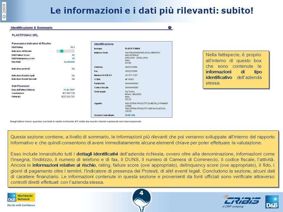 © 2009 4 Le informazioni e i dati più rilevanti: subito! Questa sezione contiene, a livello di sommario, le informazioni più rilevanti che poi verrann