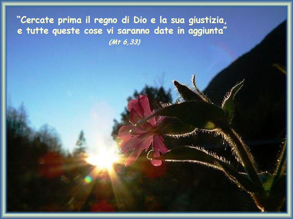 """""""Cercate prima il regno di Dio e la sua giustizia, e tutte queste cose vi saranno date in aggiunta"""" (Mt 6,33)"""
