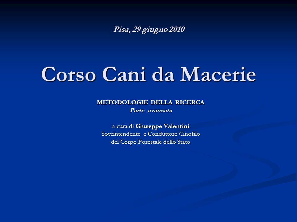 Pisa, 29 giugno 2010 Corso Cani da Macerie METODOLOGIE DELLA RICERCA Parte avanzata a cura di Giuseppe Valentini Sovrintendente e Conduttore Cinofilo del Corpo Forestale dello Stato