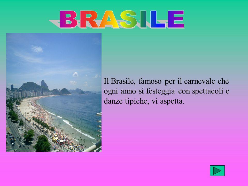 Il Brasile, famoso per il carnevale che ogni anno si festeggia con spettacoli e danze tipiche, vi aspetta.
