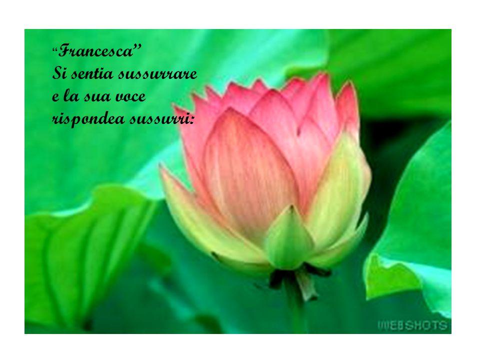 Aprissi tutta la bella per amore, il sesso profumava come un fiore come un fiore.