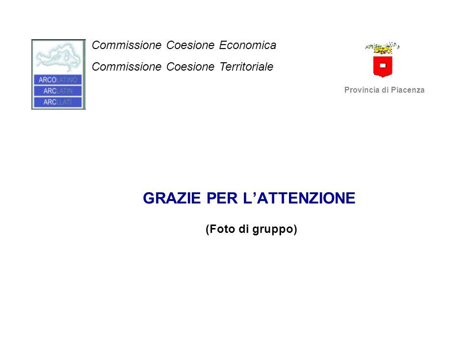 GRAZIE PER L'ATTENZIONE (Foto di gruppo) Commissione Coesione Economica Commissione Coesione Territoriale Provincia di Piacenza