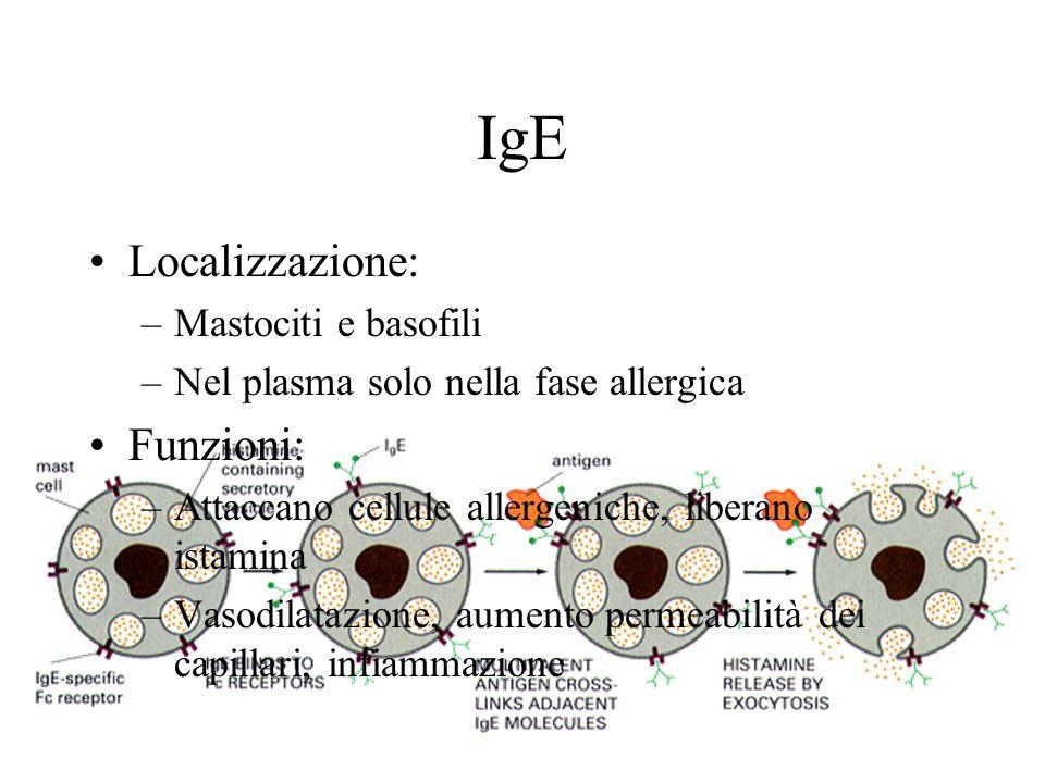 IgE Localizzazione: –Mastociti e basofili –Nel plasma solo nella fase allergica Funzioni: –Attaccano cellule allergeniche, liberano istamina –Vasodilatazione, aumento permeabilità dei capillari, infiammazione