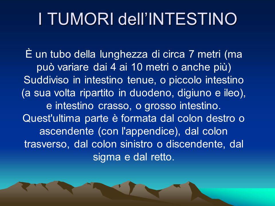 I TUMORI dell'INTESTINO È un tubo della lunghezza di circa 7 metri (ma può variare dai 4 ai 10 metri o anche più) Suddiviso in intestino tenue, o picc