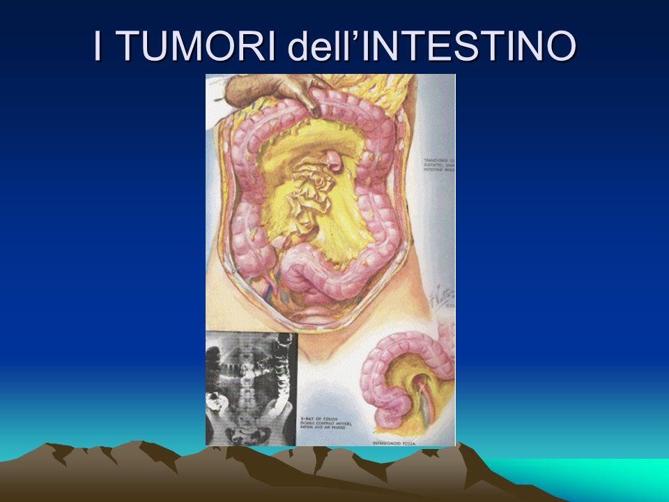TERAPIA CHIRURGICA Amputazione del retto addomino-perineale M. Saviano 2004