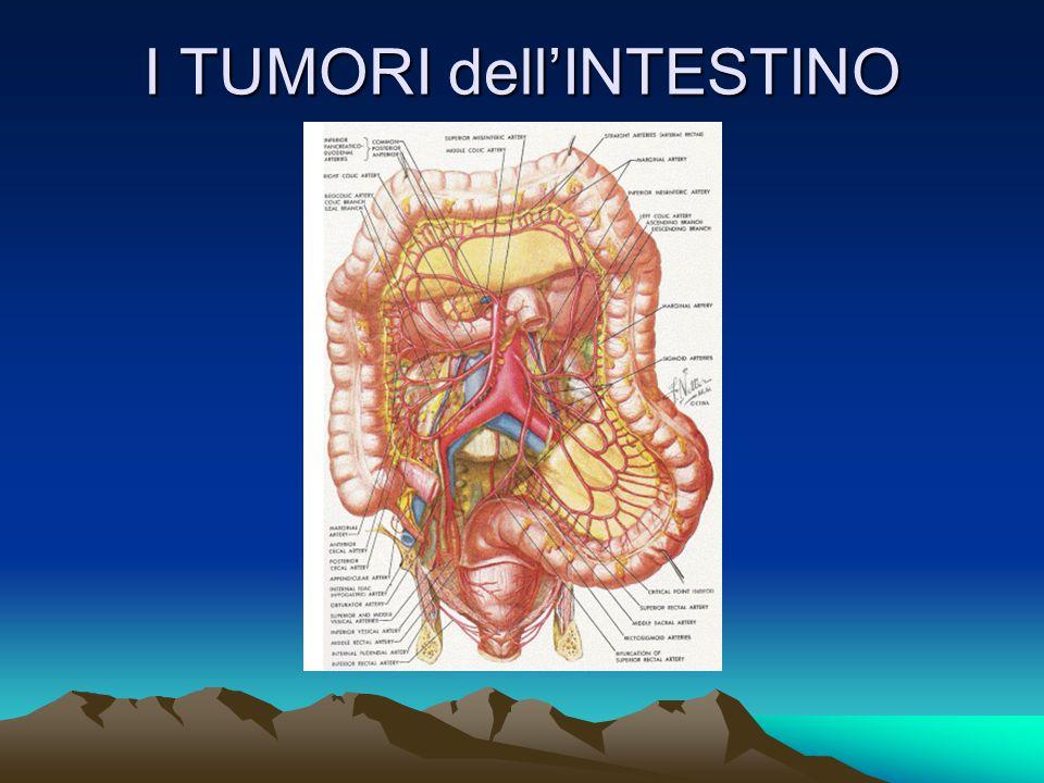 TERAPIE del CANCRO Chirurgia Dipende dalla estensione Radicale o Palliativa