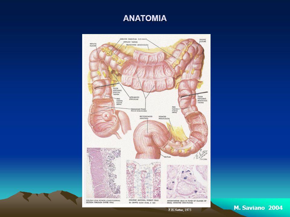 Fattori di Rischio per il CANCRO Fattori non ereditari: sono importanti l età (l incidenza è 10 volte superiore tra le persone di età compresa tra i 60 e i 64 anni rispetto a coloro che hanno 40-44 anni), le malattie infiammatorie croniche intestinali (tra le quali la rettocolite ulcerosa e, secondo studi recenti, anche il morbo di Crohn), una storia clinica passata di polipi del colon o di un pregresso tumore del colon retto.