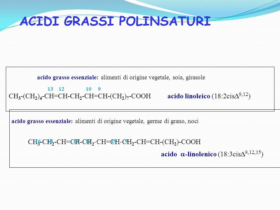 CH 3 -(CH 2 ) 4 -CH=CH-CH 2 -CH=CH-(CH 2 ) 7 -COOH acido linoleico (18:2cis  9,12 ) 13 12…… 10… 9 acido grasso essenziale: alimenti di origine vegetale, soia, girasole CH 3 -CH 2 -CH=CH-CH 2 -CH=CH-CH 2 -CH=CH-(CH 2 )-COOH acido  -linolenico (18:3cis  9,12,15 ) 16 15 13 12…… 10… 9 acido grasso essenziale: alimenti di origine vegetale, germe di grano, noci ACIDI GRASSI POLINSATURI