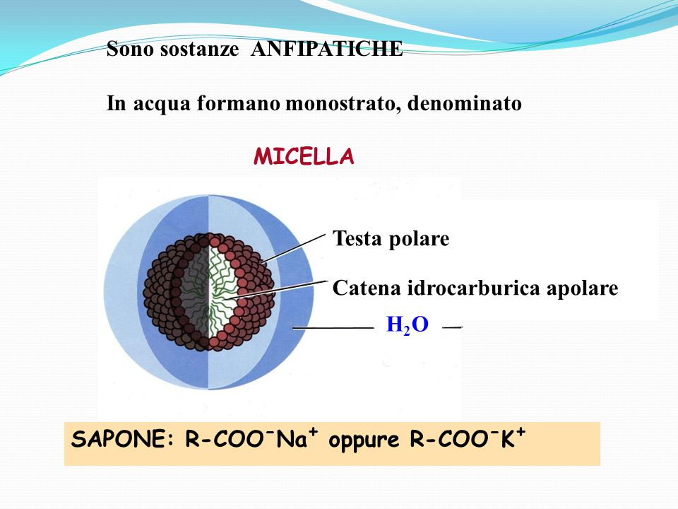 Sono sostanze ANFIPATICHE In acqua formano monostrato, denominato MICELLA Testa polare Catena idrocarburica apolare SAPONE: R-COO - Na + oppure R-COO - K + H2OH2O