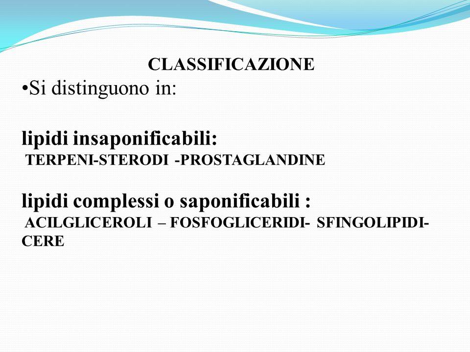 CLASSIFICAZIONE Si distinguono in: lipidi insaponificabili: TERPENI-STERODI -PROSTAGLANDINE lipidi complessi o saponificabili : ACILGLICEROLI – FOSFOGLICERIDI- SFINGOLIPIDI- CERE