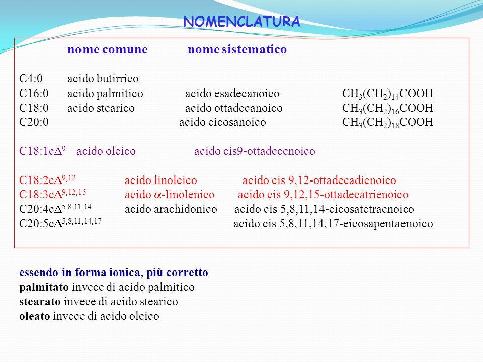 GLI ACIDI GRASSI SONO CLASSIFICATI IN BASE ALLA STRUTTURA DELLA CATENA IDROCARBURICA SATURI - senza doppi legami catena satura in H, completamente ridotta MONOINSATURI - un doppio legame POLINSATURI - almeno due doppi legami I doppi legami sono in genere nella forma stereoisomera cis