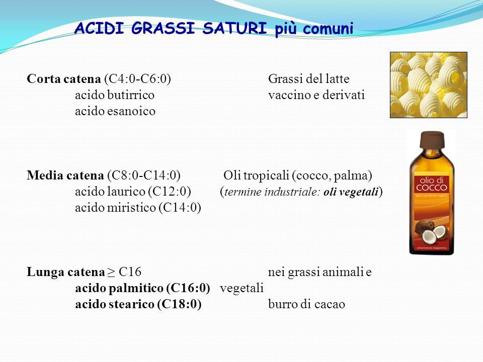 ACIDI GRASSI SATURI più comuni Corta catena (C4:0-C6:0) Grassi del latte acido butirrico vaccino e derivati acido esanoico Media catena (C8:0-C14:0) Oli tropicali (cocco, palma) acido laurico (C12:0)( termine industriale: oli vegetali ) acido miristico (C14:0) Lunga catena ≥ C16 nei grassi animali e acido palmitico (C16:0) vegetali acido stearico (C18:0) burro di cacao