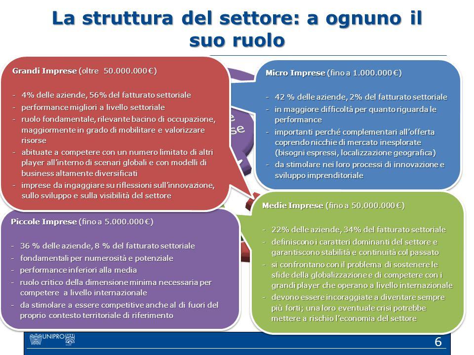 6 Micro Imprese (fino a 1.000.000 €) -42 % delle aziende, 2% del fatturato settoriale -in maggiore difficoltà per quanto riguarda le performance -impo