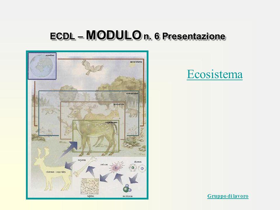 Ecosistema ECDL – MODULO n. 6 Presentazione Gruppo di lavoro