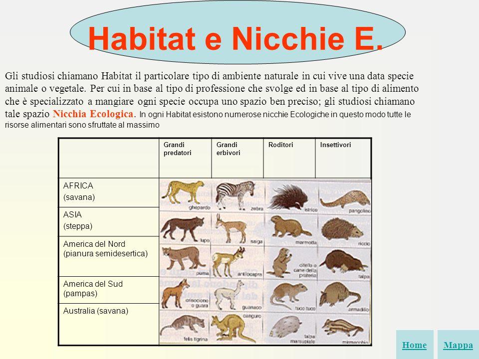 Habitat e Nicchie E.