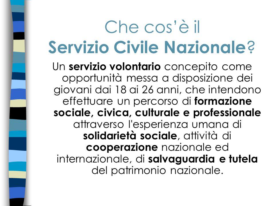 Che cos'è il Servizio Civile Nazionale .