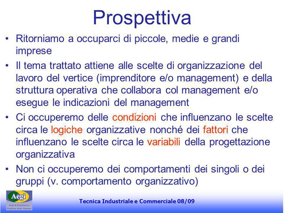 Tecnica Industriale e Commerciale 08/09 Logica (o modello) organica Adatto a situazioni di dinamismo tecnologico e di mercato Esempio: imprese di consulenza, R&S, pubblicità etc.