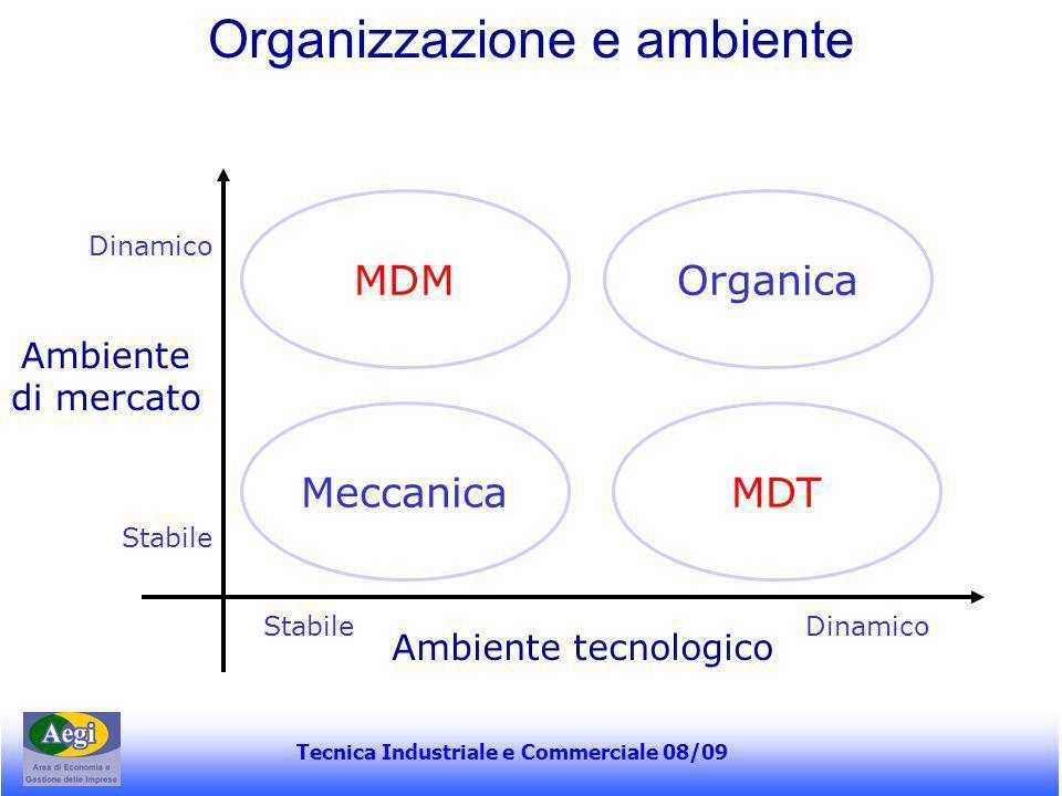 Tecnica Industriale e Commerciale 08/09 Organizzazione e ambiente MDMOrganica MeccanicaMDT Ambiente tecnologico Ambiente di mercato Dinamico Stabile D