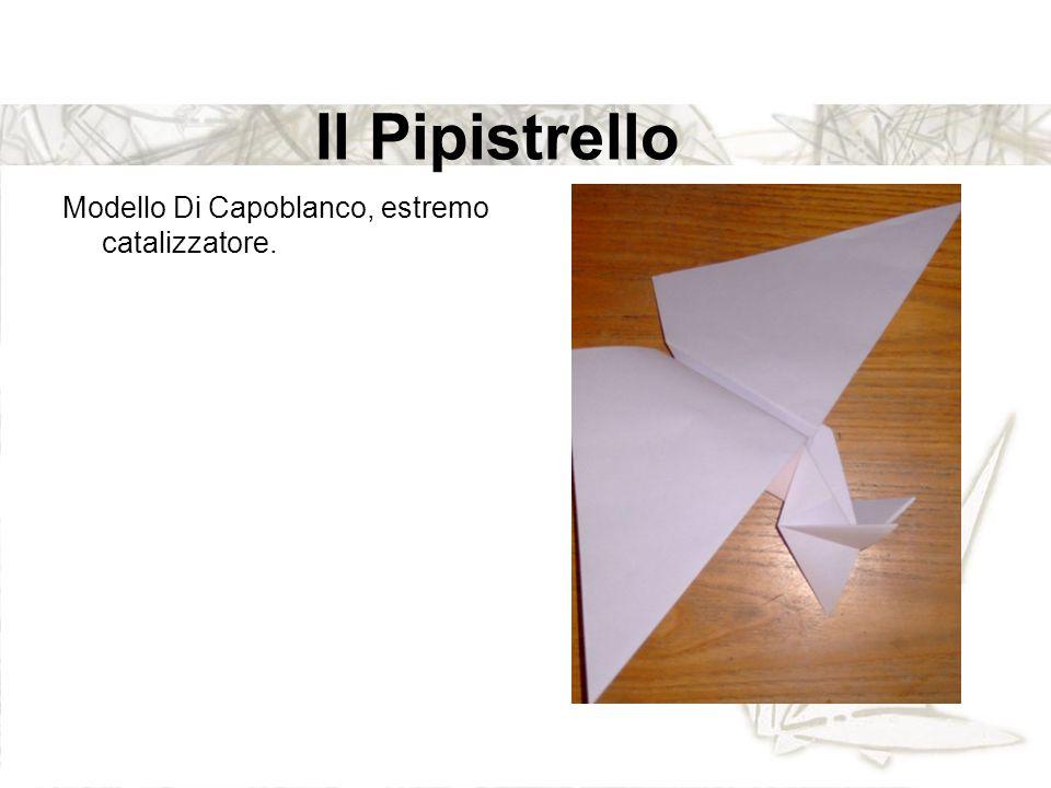 Il Pipistrello Modello Di Capoblanco, estremo catalizzatore.