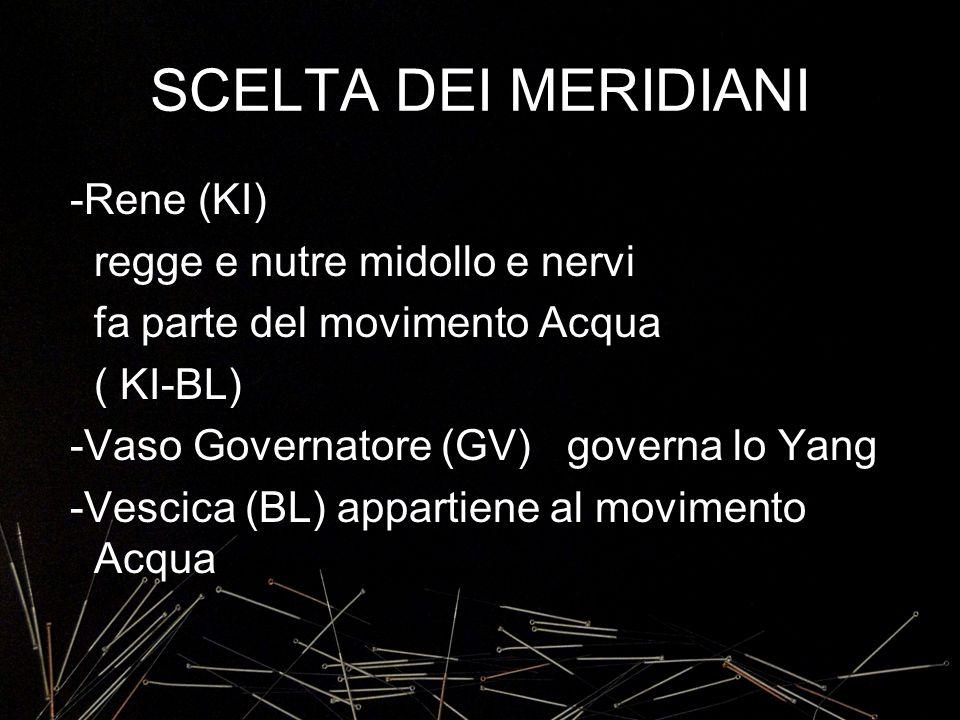 SCELTA DEI MERIDIANI -Rene (KI) regge e nutre midollo e nervi fa parte del movimento Acqua ( KI-BL) -Vaso Governatore (GV) governa lo Yang -Vescica (B