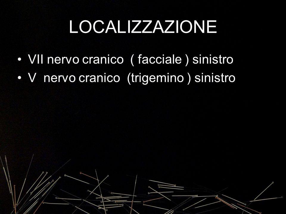 LOCALIZZAZIONE VII nervo cranico ( facciale ) sinistro V nervo cranico (trigemino ) sinistro