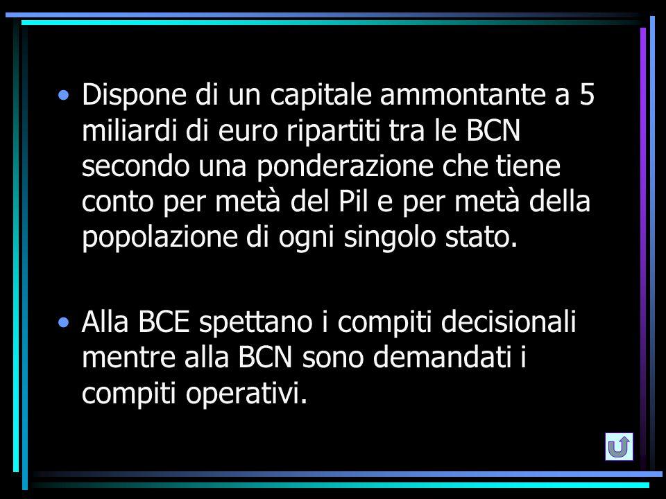 Dispone di un capitale ammontante a 5 miliardi di euro ripartiti tra le BCN secondo una ponderazione che tiene conto per metà del Pil e per metà della