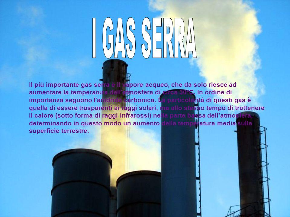 Il più importante gas serra è il vapore acqueo, che da solo riesce ad aumentare la temperatura dell'atmosfera di circa 30°C. In ordine di importanza s