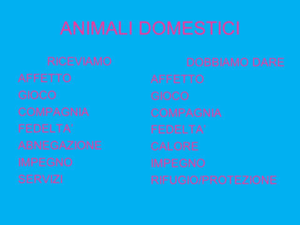 ANIMALI DOMESTICI RICEVIAMO AFFETTO GIOCO COMPAGNIA FEDELTA' ABNEGAZIONE IMPEGNO SERVIZI DOBBIAMO DARE AFFETTO GIOCO COMPAGNIA FEDELTA' CALORE IMPEGNO RIFUGIO/PROTEZIONE