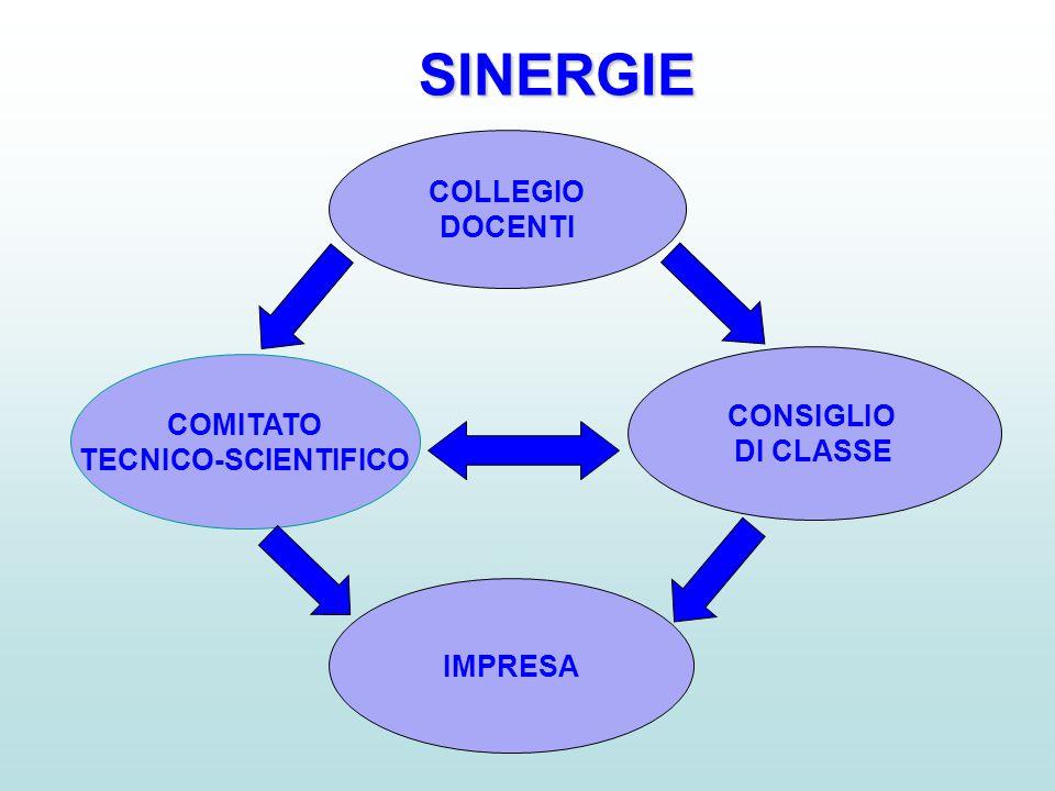 COLLEGIO DOCENTI COMITATO TECNICO-SCIENTIFICO CONSIGLIO DI CLASSE IMPRESA SINERGIE