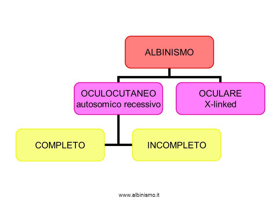 www.albinismo.it ALBINISMO OCULOCUTANEO autosomico recessivo COMPLETOINCOMPLETO OCULARE X-linked
