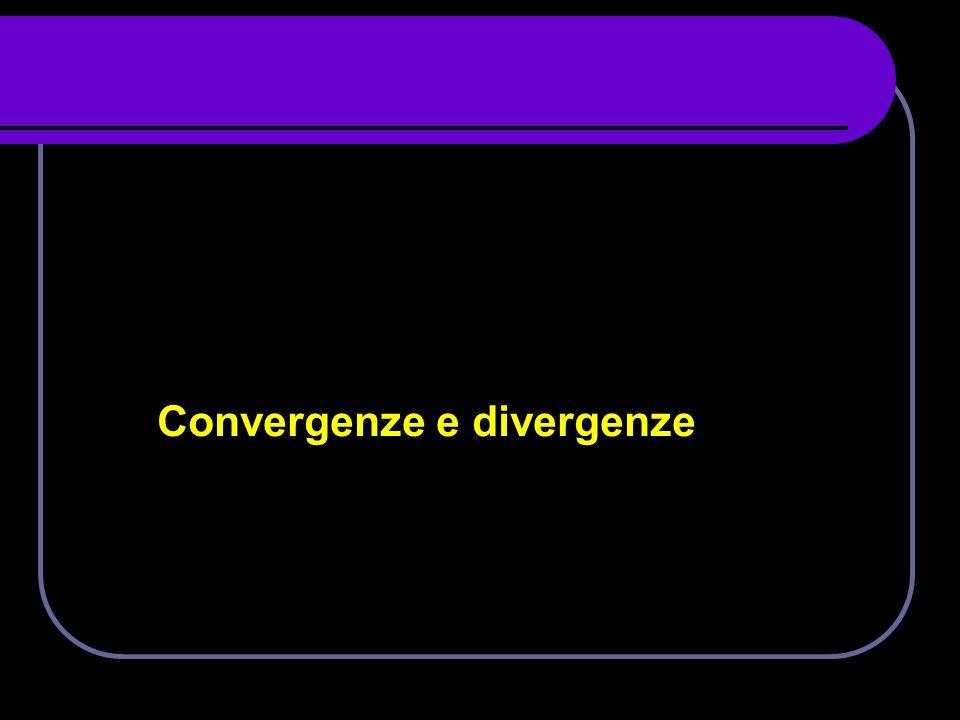 Convergenze e divergenze