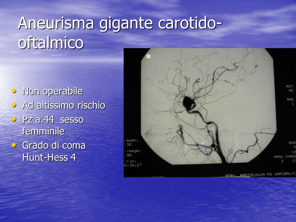 Aneurisma gigante carotido- oftalmico • Non operabile • Ad altissimo rischio • Pz a.44 sesso femminile • Grado di coma Hunt-Hess 4