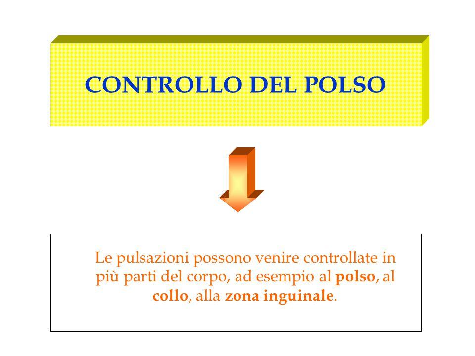 CONTROLLO DEL POLSO Le pulsazioni possono venire controllate in più parti del corpo, ad esempio al polso, al collo, alla zona inguinale.