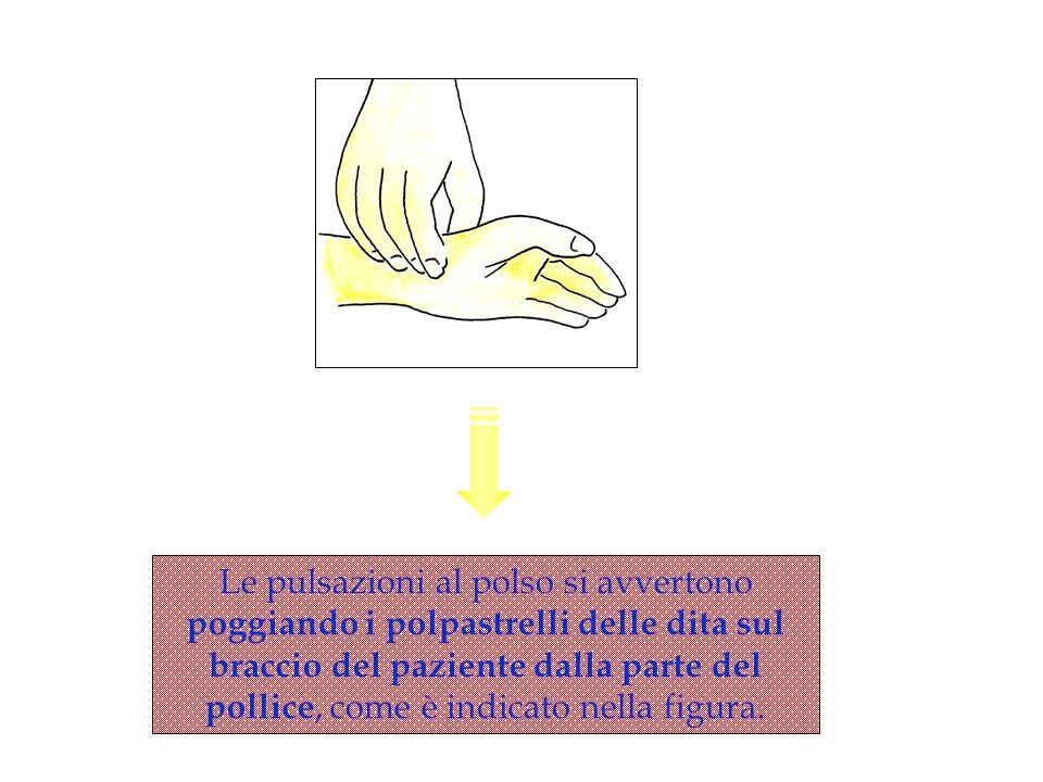 Le pulsazioni al polso si avvertono poggiando i polpastrelli delle dita sul braccio del paziente dalla parte del pollice, come è indicato nella figura.