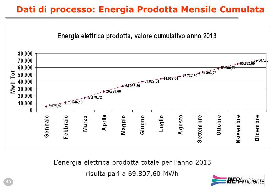 45 Dati di processo: Energia Prodotta Mensile Cumulata L'energia elettrica prodotta totale per l'anno 2013 risulta pari a 69.807,60 MWh