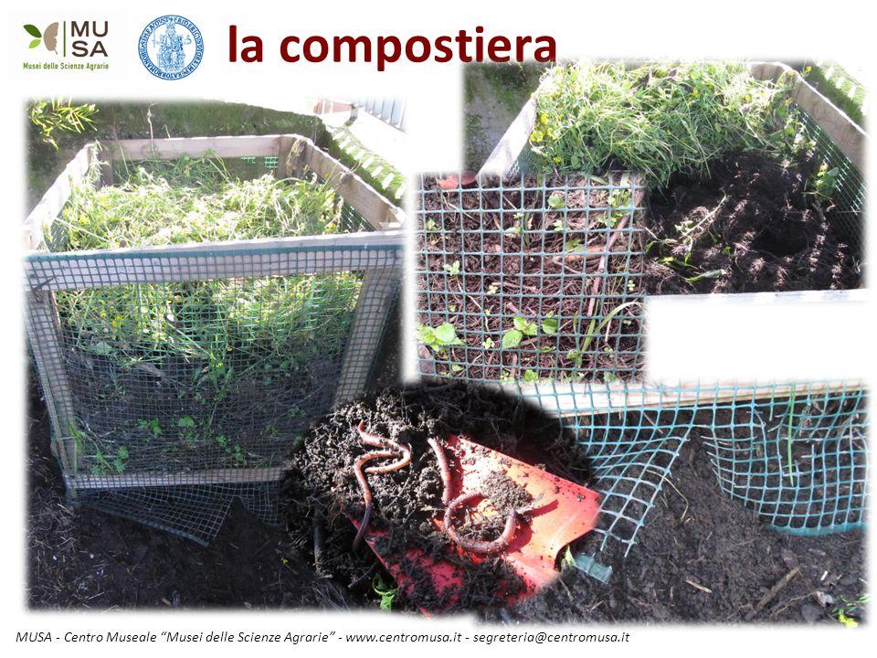 """MUSA - Centro Museale """"Musei delle Scienze Agrarie"""" - www.centromusa.it - segreteria@centromusa.it la compostiera"""