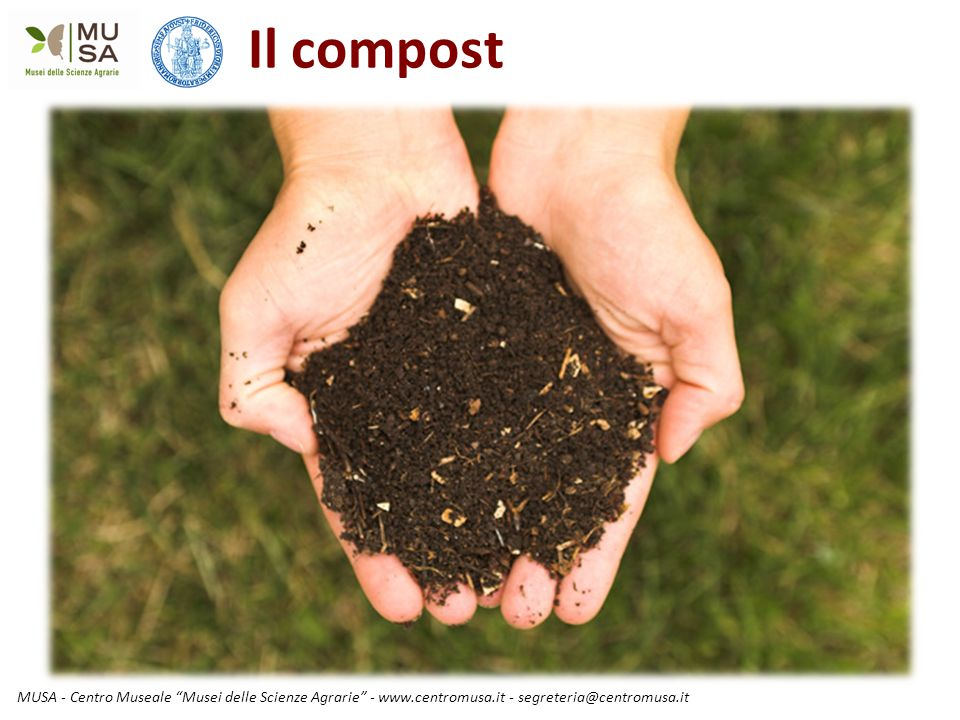 """MUSA - Centro Museale """"Musei delle Scienze Agrarie"""" - www.centromusa.it - segreteria@centromusa.it Il compost"""